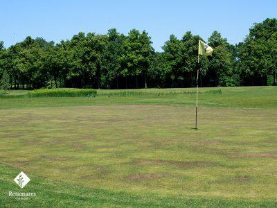 Desde tu campo de golf en Madrid, Retamares, te contamos por qué es importante el pinchado del green